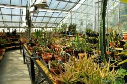 Image of CWU Greenhouse, room 3.