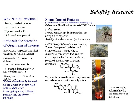 Minor research projects in chemistry