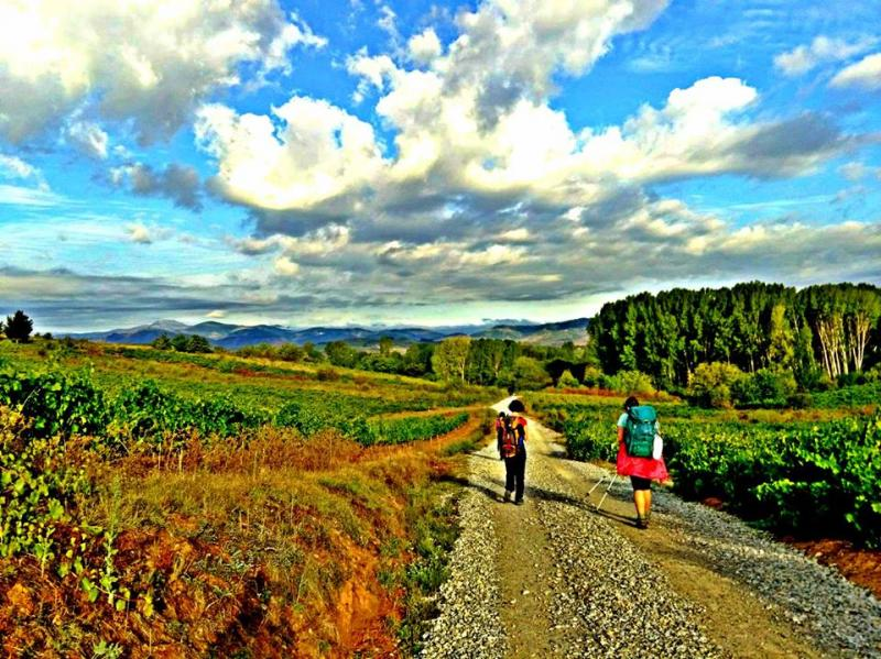 Students in the Camino Program hike through El Bierzo, Spain