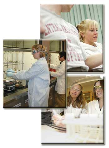 Image of students in health related fields such as Exercise Science, Chemistry, and Biology.