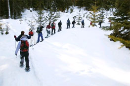 Students snowshoeing in the Cascade Mountains