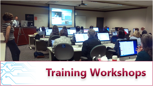 Faculty Training Workshops
