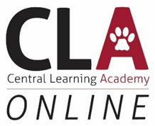 Central Learning Academy - Online