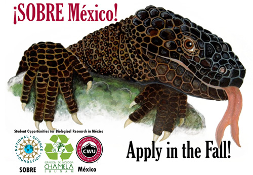 Artist render of Mexican beaded lizard, and partner logos: CWU, NSF, and Chamela Ibunam. Text: ¡SOBRE México! Apply in the fall!