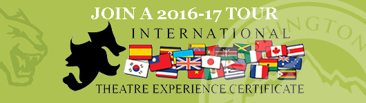 International Theatre Experience